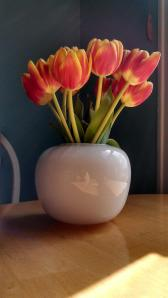 Beautiful tulips on my kitchen table. They have been bringing me joy for days.