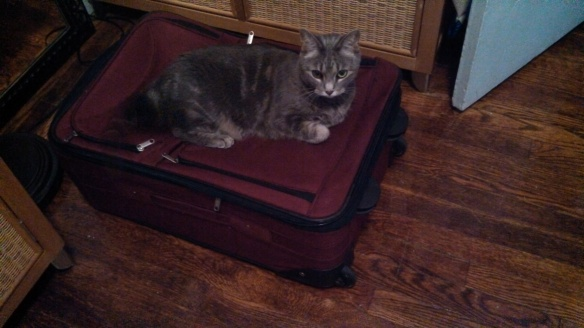 She clearly doesn't want me to leave again anytime soon.